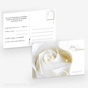 Antwortpostkarte Imago Rose 15 x 10 cm