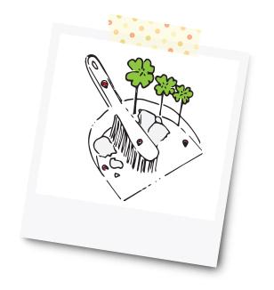 Scherben bringen Glück - 31 Kreative Geldgeschenke für die Hochzeit - Dankeskarte.com